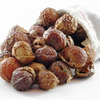 WHOLE DRIED SOAPNUT WITHOUT NUT FROM VIETNAM