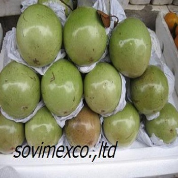 FRESH MILK FRUIT WITH BEST QUALITY FOR SALES AND EXPORT