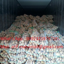pakistan Fresh Potato new 2018 supplying all year round