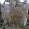 /product-detail/wet-salted-donkey-hides-cow-skins-and-pickled-sheep-skins--50038878335.html