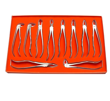 Tooth Extraction Forceps German Quality G.M. Industries