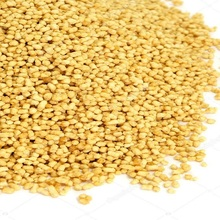 Soya Lecithin for sale