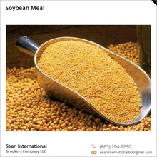 Top Quality Fresh and Natural Bulk Soybean Meal for Sale