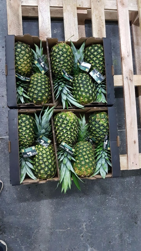 MD2 Golden Extra Sweet Pineapples from Costa Rica