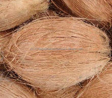 Vietnam Fresh Semi Husked Coconut/ Fresh Mature Coconut for Sales (Victoria)