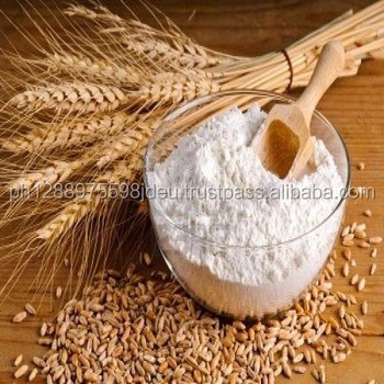 BIG SALE / All purpose wheat flour - Extract 72 % - Egyptian origin - 50 & 25 kg / bag - High Gluten - Free