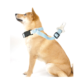 TAIWAN pet collars car safety dog seat belt
