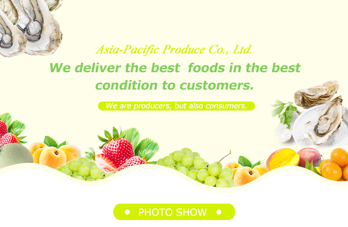 Japan fresh tomatoes fruit and vegetable prices for sale