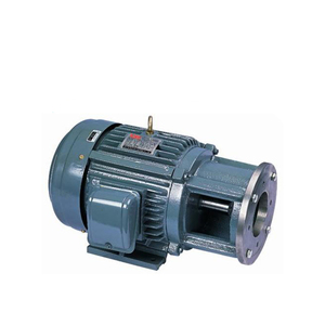 Mp Series 0.5Hp 1H 2Hp 3Hp 10Hp Electric Dc 12V 48V Ac 220V Motor Single Phase Three Phase Electric Motor 5000Rmp Credit Seller