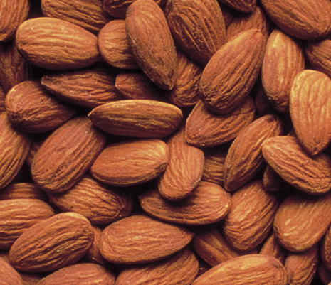 Premium quality ALMOND NUT FOR SALE