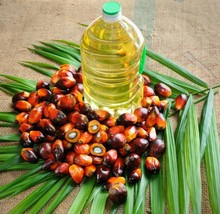 indonesia / malaysia suppliers cheap price refined rbd cp6 cp8 cp10 palm cooking oil