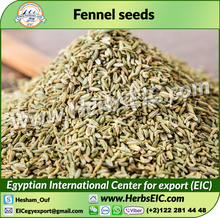 High Quality Solar Dry Fennel