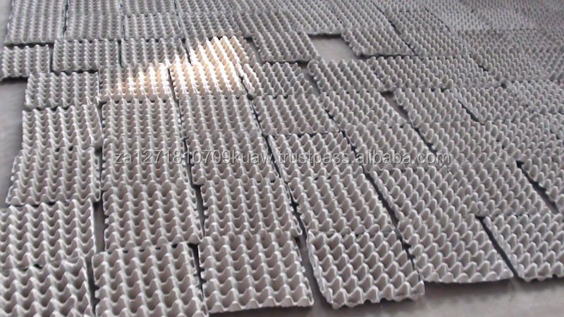 Water-proof,Oil-resisting Impervious Pulp paper egg tray