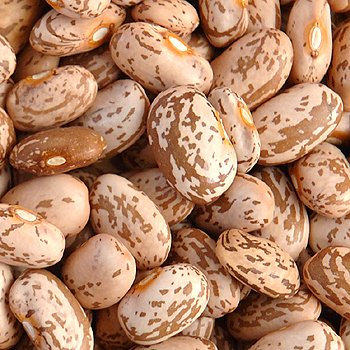 Wholesale Light Speckled Kidney Beans