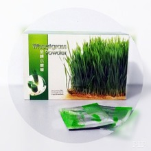 100% pure wheat grass including root certified organic