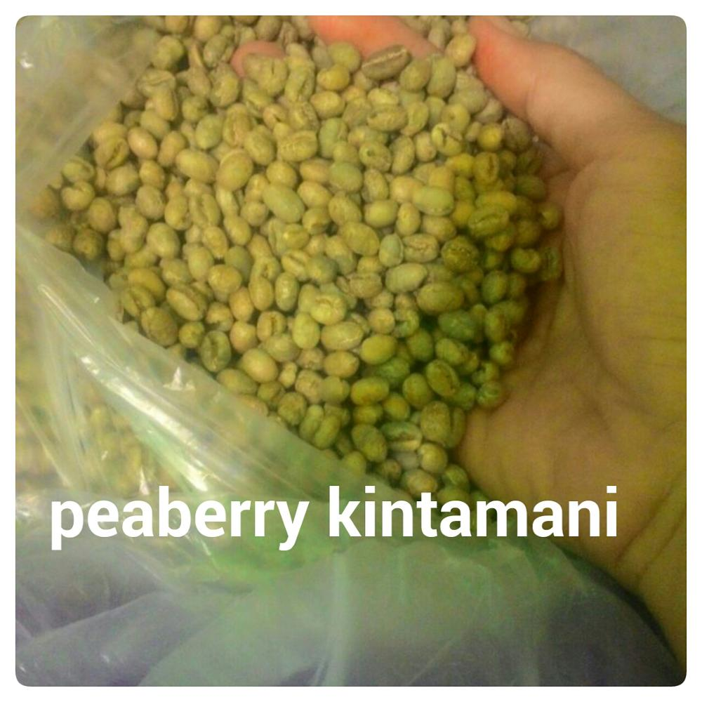 ARABIKA PEABERRY KINTAMANI