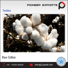 Indian Raw Cotton 100% Pure Cotton Shankar 6 C1% 2016-17 Crop 29mm 29gpt Strength 4-4.9mic 8.5%Moisture 3%Trash
