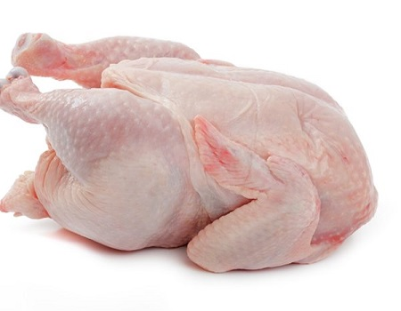 BRAZILIAN HALAL FROZEN WHOLE CHICKEN SUPPLIERS