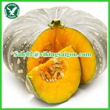 FRESH PUMPKIN GOOD QUALITY - COMPETITIVE FROM VIETNAM