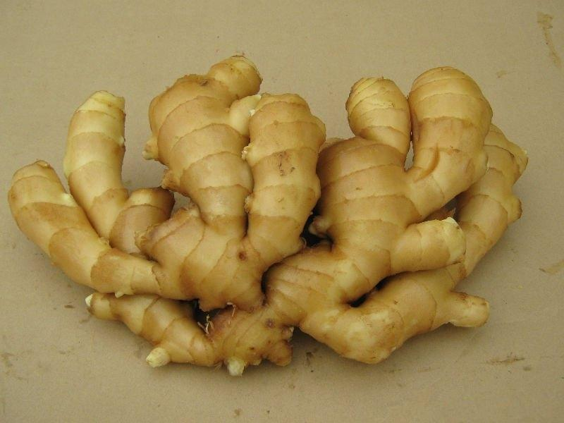 Fresh/Dried Ginger Brasil Ginger