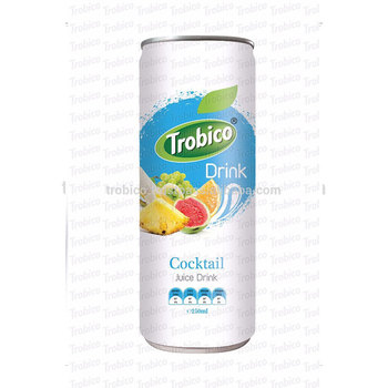 high quality manufacturers beverage fruit juice cocktail juice drink