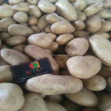 Wholesale high quality large cheapest price of fresh potatoes