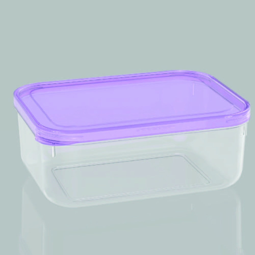 Food Grade Take Away Disposable Plastic Oven Safe Food Container L20403-5 purple