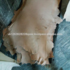 /product-detail/-first-class-donkey-hides-wet-salted-donkey-hides-wet-salted-cow-hides-wet-salted-stingray-50036253918.html