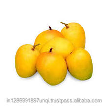 Good Quality of Ratnagiri Mango available for export from India