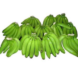 Philippines Fresh Cavendish Bananas