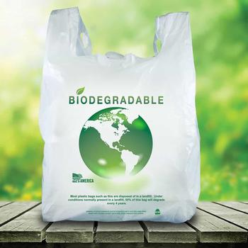 Biodegradable plastic bag Vietnam manufacturer custom printing