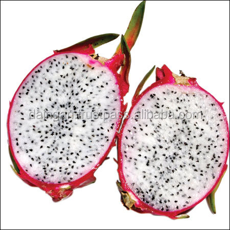 Dragon Fruit Powder dragon fruit price forever living products photo