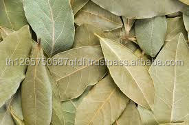 Bay Leaves competitive price