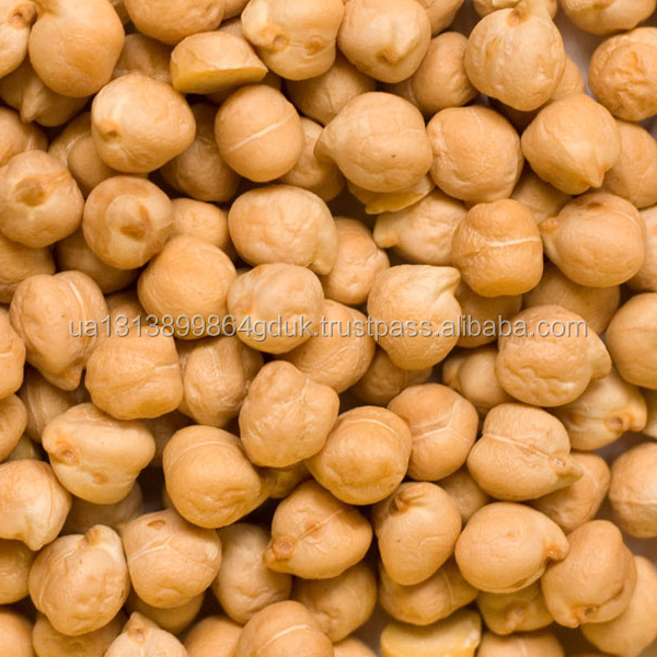 6mm~8mm dried chickpea beans chick pea/Factory wholesale provide competitive chick peas price