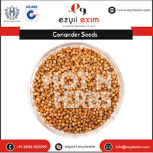 Good Quality Sortex /Machine Clean Coriander Seeds Indian Spices Exporter