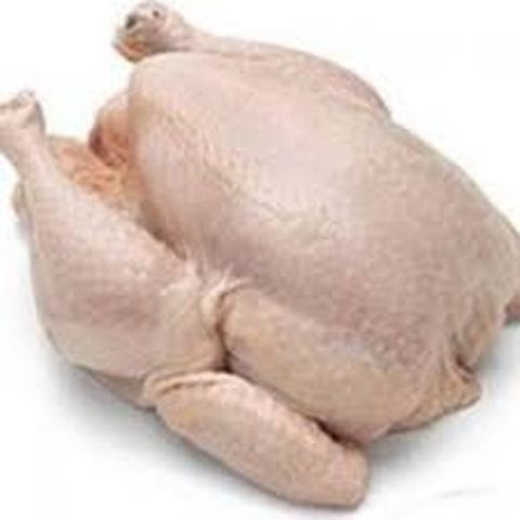 USA Quality Halal Frozen Whole Chicken and Parts / Gizzards / Thighs / Feet / Paws / Drums