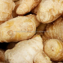buyers of fresh ginger