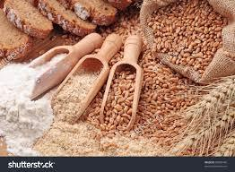 WHEAT FLOUR / WHEAT BRAN / Hard Wheat Grain / Whole Wheat Flour / WHEAT FLOUR FOR BREAD (BAKERY)