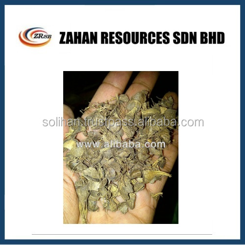 High Quality Palm Kernel Shell Charcoal in Malaysia