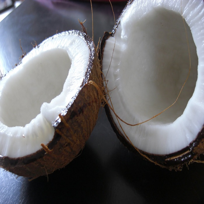 Fresh coconut good price for import fresh coconut best quality