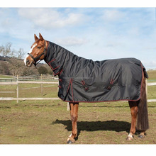 HORSE RUG HEAVY WEIGHT FULL NECK OUTDOOR RUG 250g/350g FILL BLACK/RED
