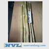 TOP QUALITY! OFFER FROZEN SUGARCANE/ FRESH SUGARCANE FOR JUICER/FRESH SUGARCANE IN BULK 2018 with high quality and best price