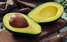 FRESH AVOCADO at VERY HIGH QUALITY and COMPETITIVE PRICE