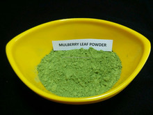 Organic Mulberry leaf powder Bulk supplier in India