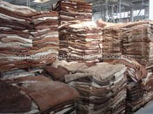 BEST QUALITY WET SALTED COW HIDES AND COW HEAD SKIN
