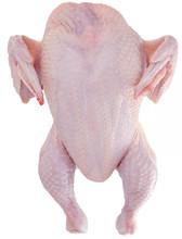 Grade A Halal Whole Frozen Chicken