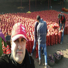 2018 wholesale price of fresh red onion from Egypt