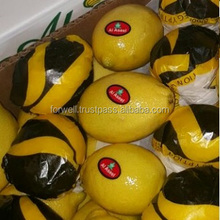 lemon fruit specification,lemon fresh,lemon buyers