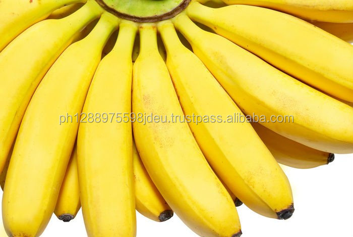 Class A Premium Cavendish Banana For Sale