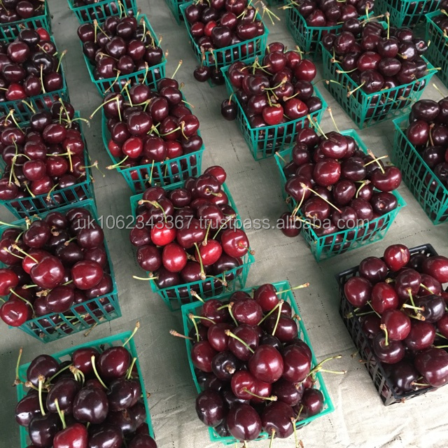 FRESH , FROZEN CHERRIES CERTIFIED QUALITY SGS HACCP, ISO, GMP